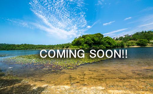 今年から当ホームページで浜湯山自治会・各団体などのイベントや活動を紹介します。